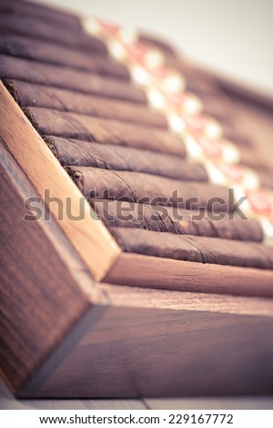cigars in open humidor. close up - stock photo
