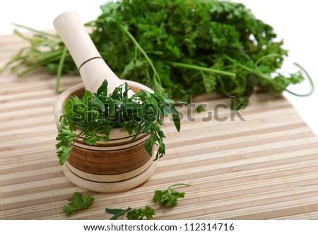 cilantro marinated stick to macerate - stock photo