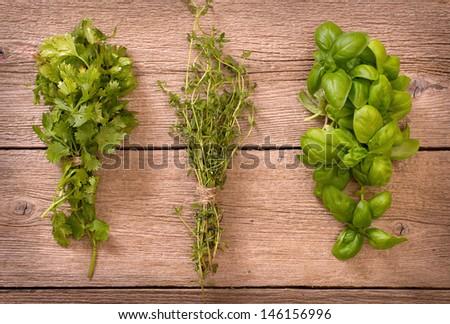 Cilantro, thyme and basil bundles - stock photo