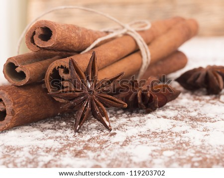 cinnamon and anise - stock photo