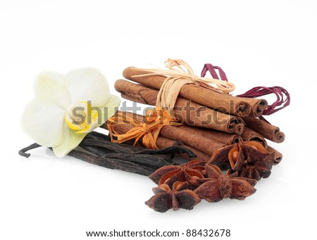 cinnamon, anise and vanilla on white - stock photo