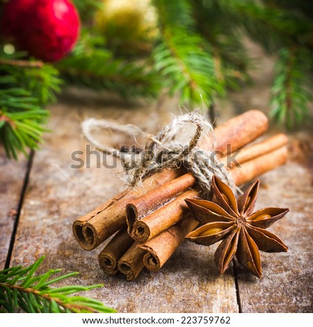 Cinnamon sticks and anise stars for mullled wine, square image - stock photo