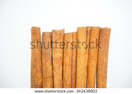 Cinnamon sticks on white background.  Kulit kayu manis. Selective focus