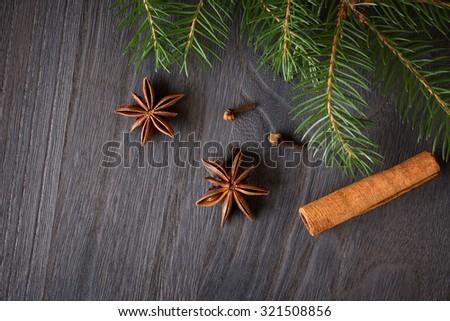 Cinnamon sticks, star aniseand  fir tree branches - stock photo