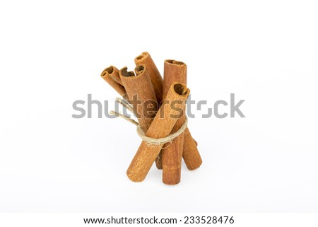 Cinnamon sticks tied with rope on a white background - stock photo