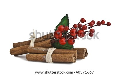 Cinnamon sticks with mistletoe - stock photo