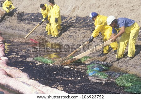CIRCA 1990 - A team of environmentalists clean up an oil spill in Huntington beach, California
