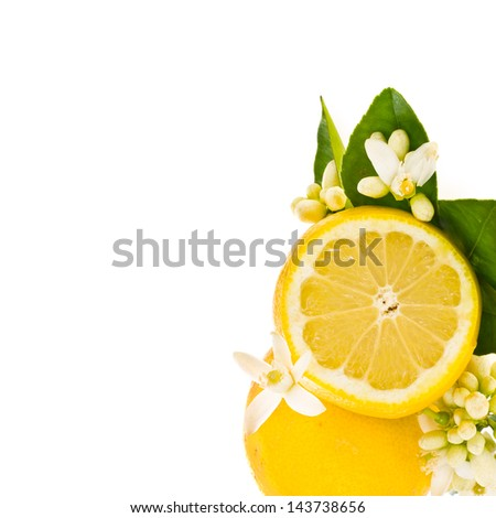citrus fruit - lemon decorated with flowers and leaves isolated on white background - stock photo