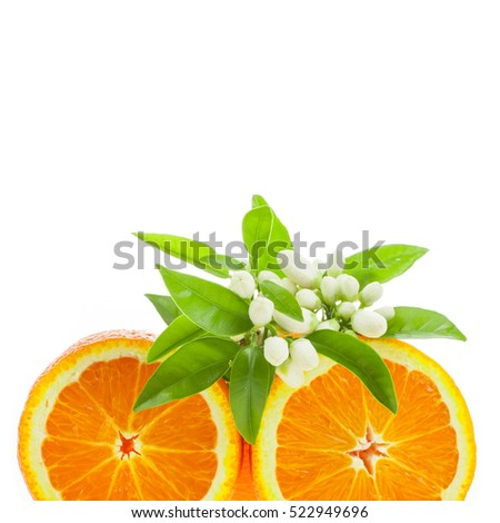 citrus fruit - orange , cut off from the side, decorated with flowers and leaves  isolated on white background