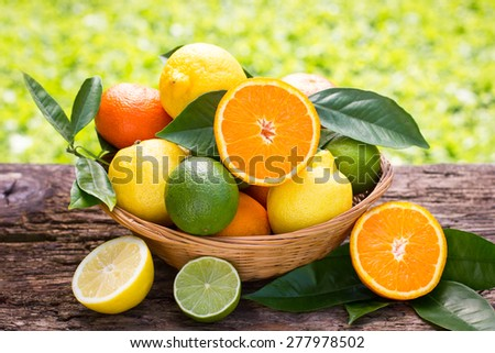 Citrus fruits in the basket  - stock photo