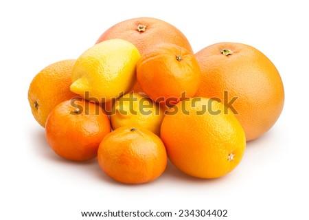citrus fruits isolated - stock photo