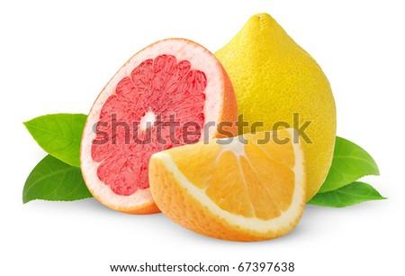 Citrus fruits isolated on white - stock photo