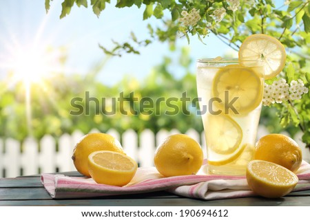 Citrus lemonade in garden setting,summer drink. - stock photo