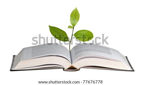 citrus sapling growing from book