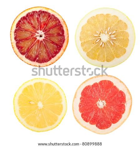 citrus slices isolated on white background - stock photo
