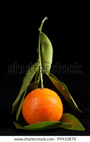 citrus with leaves isolated on black - stock photo