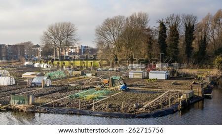 City gardening in Enkhuizen Netherlands - stock photo