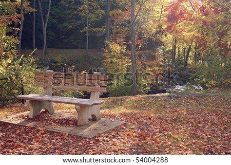 City park in autumn with bench beside stream. - stock photo
