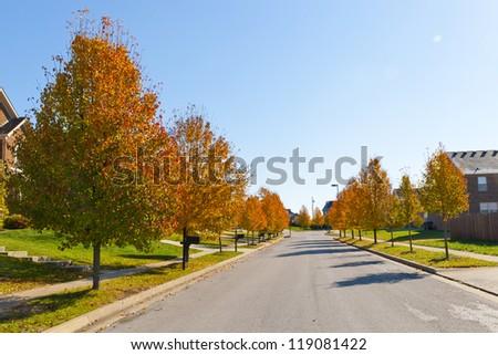 City street with autumn trees. - stock photo