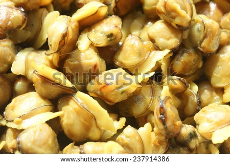 Clam meat close up. Shallow depth of field photograph. - stock photo