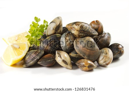 clams on a white background with lemon - stock photo