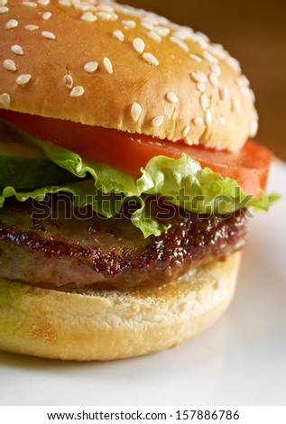classic hamburger and french fries . Shallow depth-of-field - stock photo