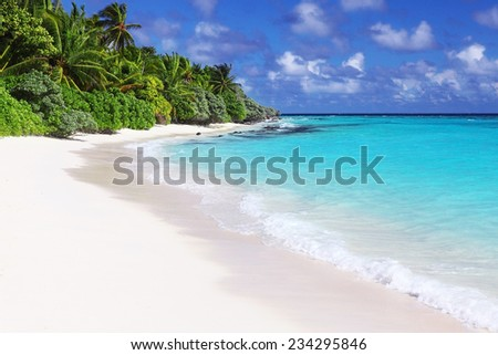 classic idyllic beach scene with sea and trees - stock photo