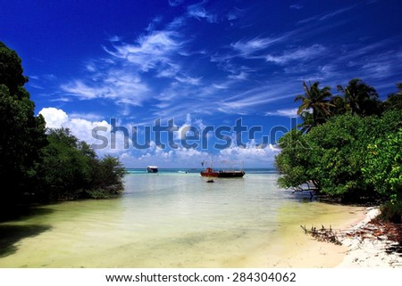 classic idyllic beach scene with sea and trees