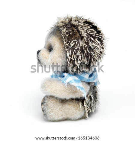 Classic teddy hedgehog on white background - stock photo