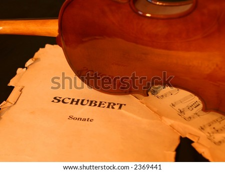 Classic violin - stock photo