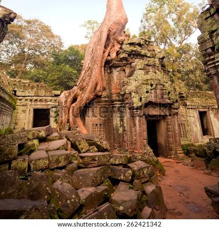 Classical picture of Ta Prohm Temple, Angkor, Cambodia - stock photo