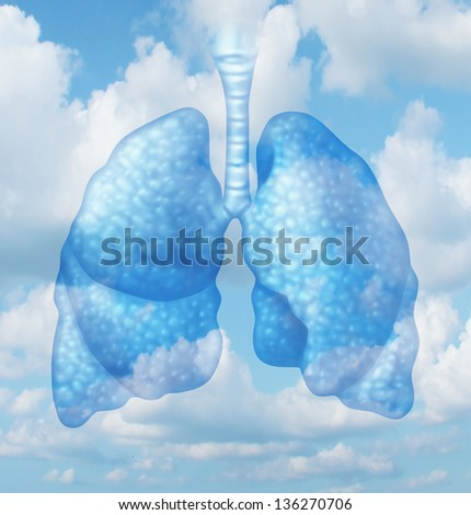 Clean air quality concept and healthy breathing in a pollution free environment represented by human lungs in a summer sky background as a symbol of healthful living. - stock photo