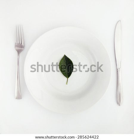 Clean eating, Top view of one green leaf in the plate - stock photo