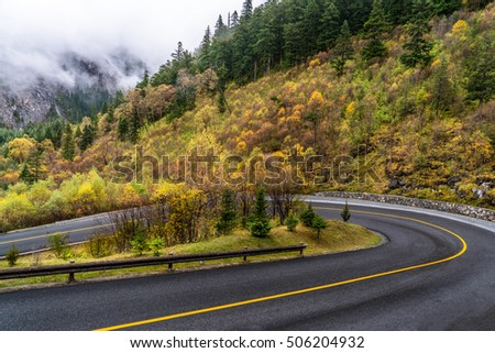 clean road in autumn forests