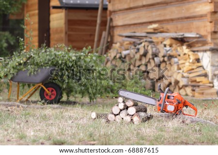 Cleanup in the garden on a sunny autumn day - stock photo