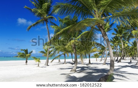 Clear blue water, sand and palm trees. Excellent place for water sports, treatment and rest.