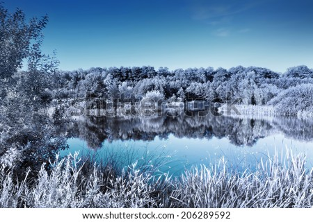 Clear lake in a forest. Infrared effect giving a cold, winter look - stock photo