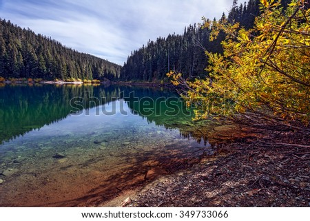Clear lake, pine trees and mountains on the background - stock photo