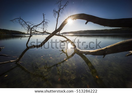 Clear lake with long exposure and autumn colors, sunrise and fog, colorful foliage and reflection of the sun in the lake, fallen trees that rise into the lake