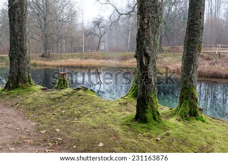 clear morning by small lake with reflections in latvia - stock photo