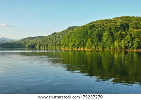 Clear summer mountain lake with forest - stock photo