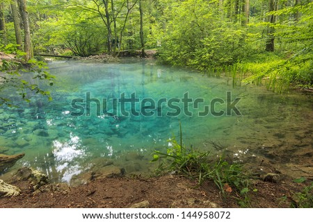 Clear water and beautiful water source in forest,Ochiul Bei,Beusnita National Park,Romania - stock photo