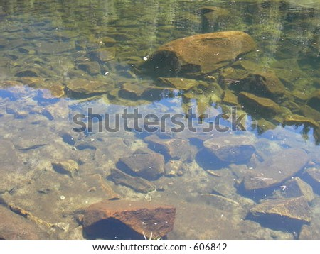 Clear water in a creek - stock photo