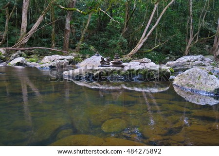 clear water in a forest creek
