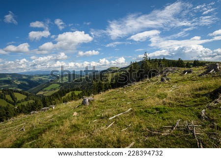 Clearcut forest and uncut forest in background,Styria,Austria. - stock photo