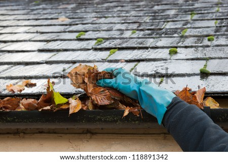 Clearing autumn gutter blocked with leaves by hand - stock photo