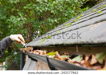 clearing blocked gutter of autumn leaves with trowel - stock photo