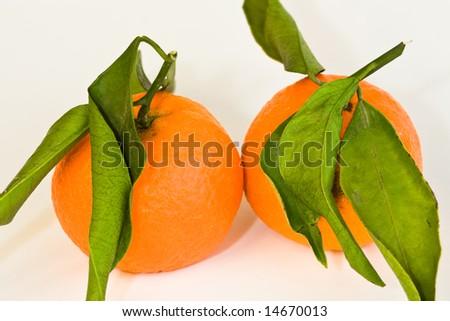 clementines - stock photo