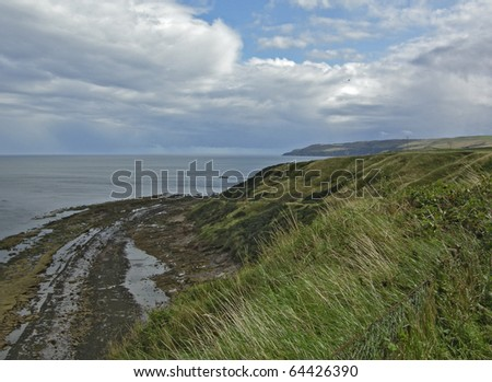 Cliffs near Cove harbour Scotland - stock photo