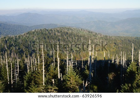 Clingmans Dome view of mountains with dead trees - stock photo